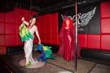 latex-fashion-show-feathers_8973